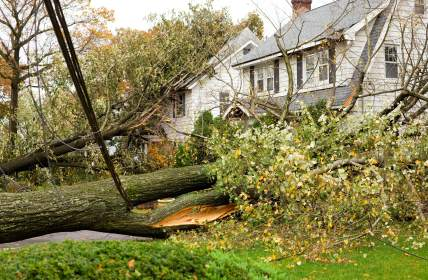 Storm damage restoration by Quick 2 Dry LLC